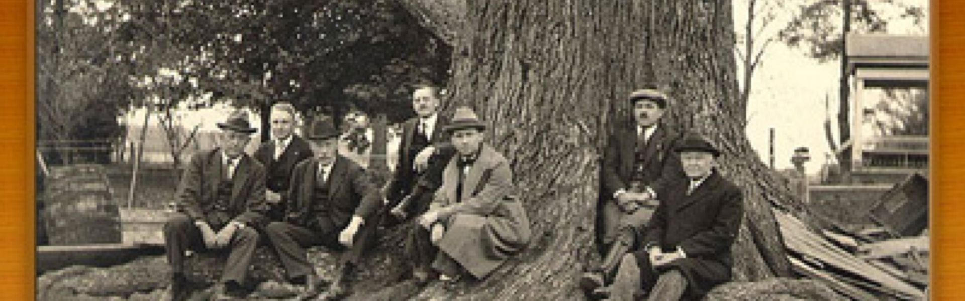 Early Forestry Board Meeting